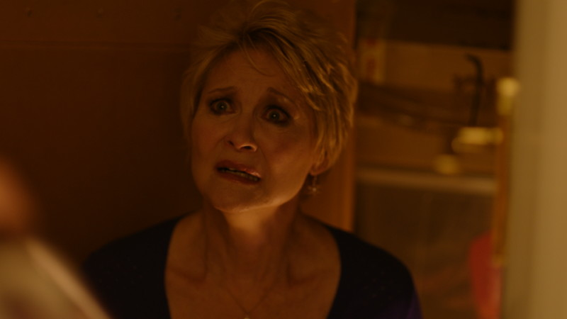 Dee-Wallace-Cupboard-Red-Christmas-Photo-by-Douglas-Burdorff